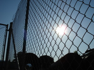 chainlink fence 1