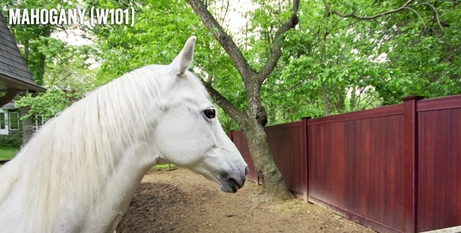 horse-fence_4